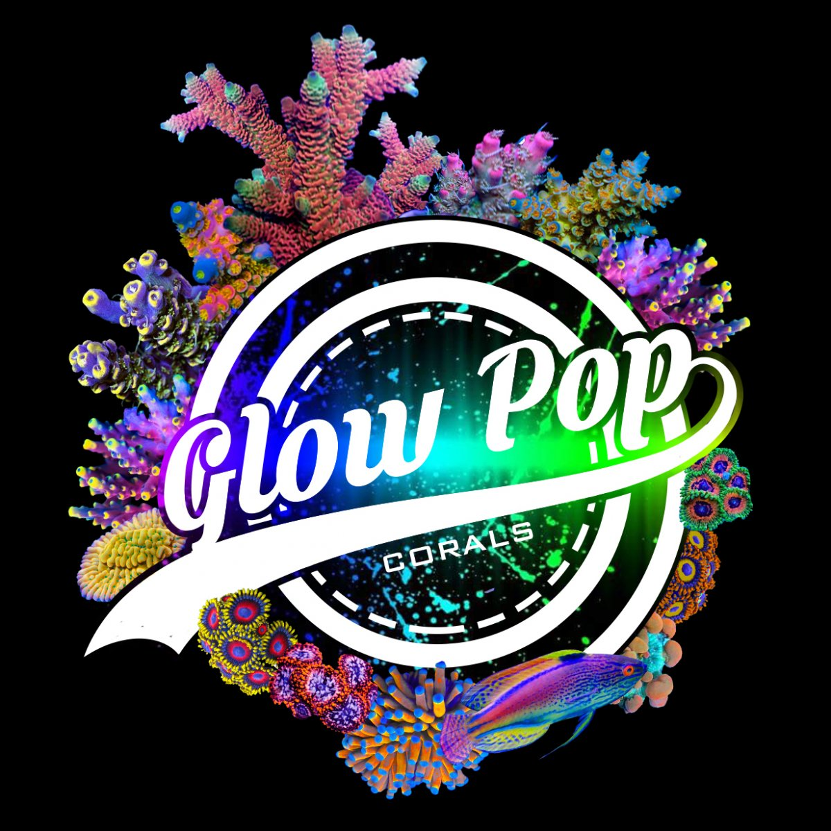 glow pop corals logo 2.jpg