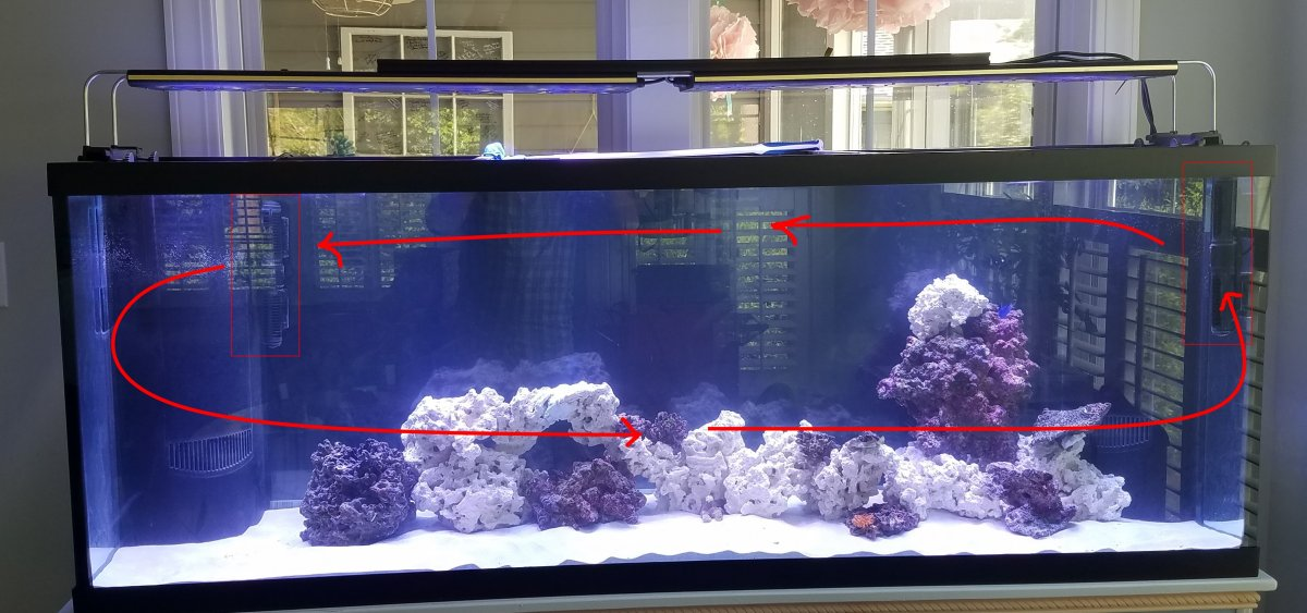 positioning maxspect gyres reef2reef saltwater and reef aquarium
