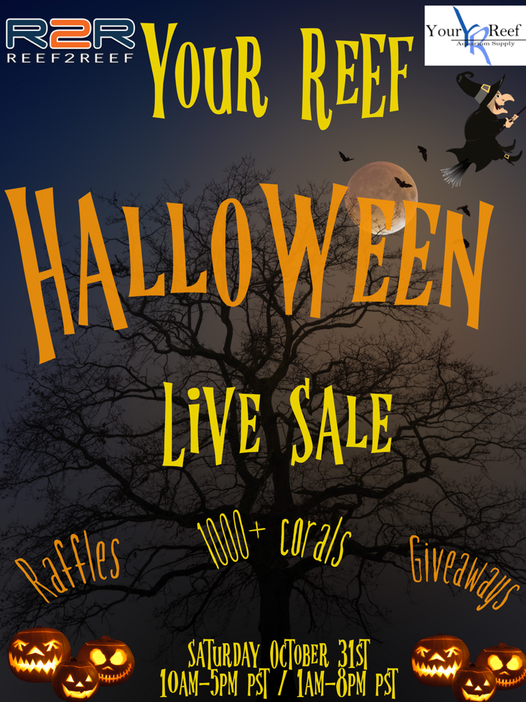 Halloween Live Sale Large.png