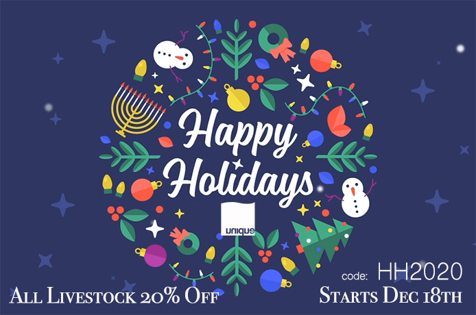 HH2020-holidays.jpg