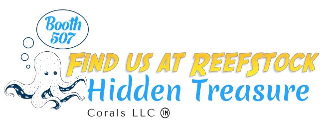 hidden_treasure[ReefStock].jpg