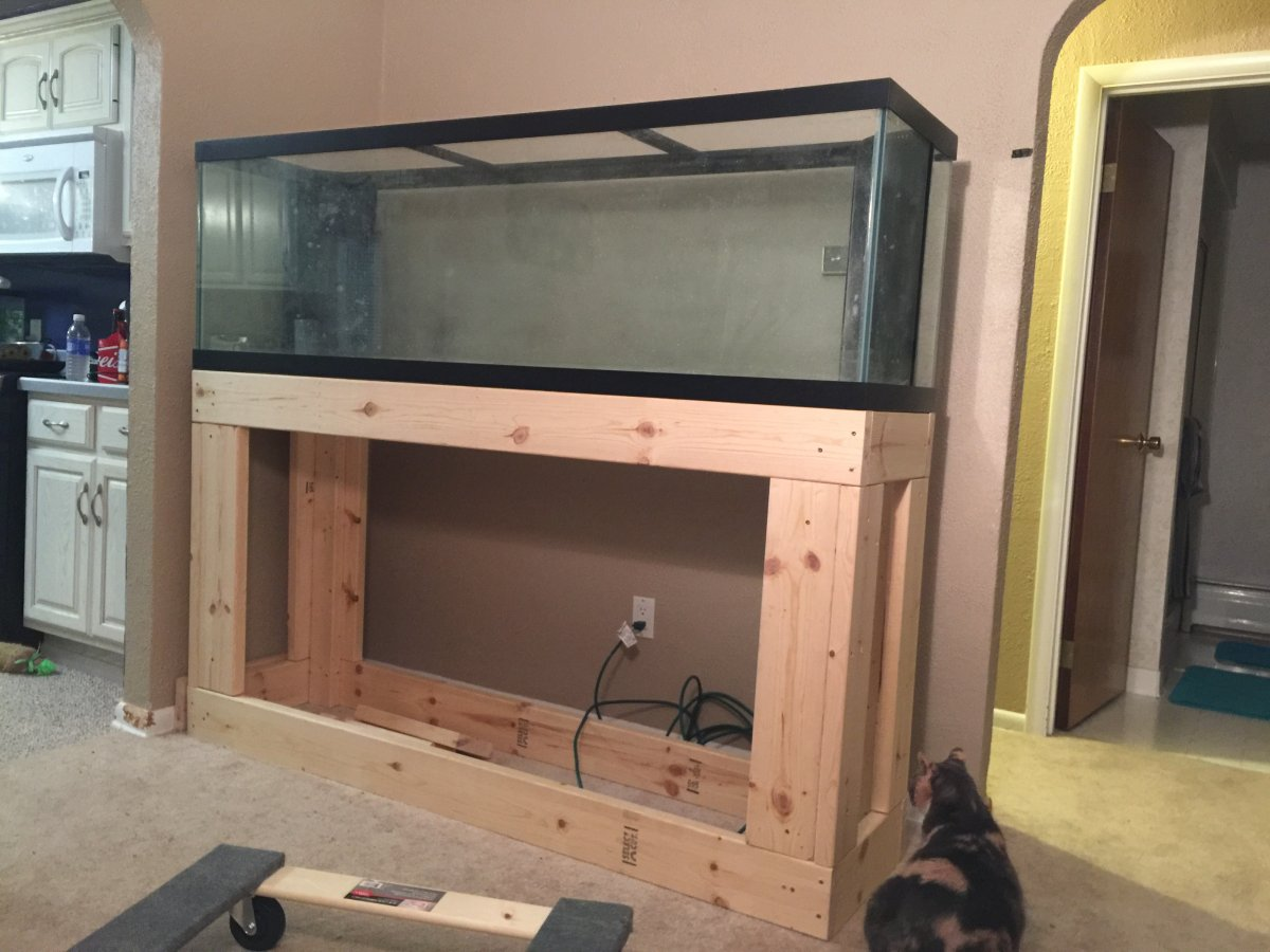 Making wood stand for 300 gallon reef2reef saltwater and reef you will also want to add bracing front to back within the top frame to prevent it from bowing in or out this is a picture of the underside of the tank jeuxipadfo Images
