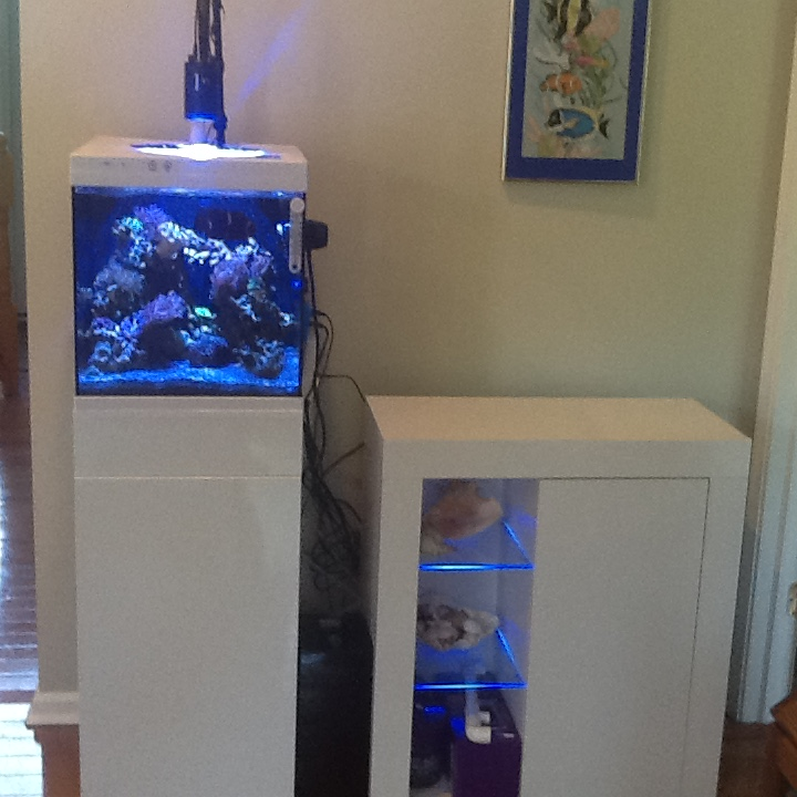 Living Room Nano Build Reef2reef Saltwater And Reef