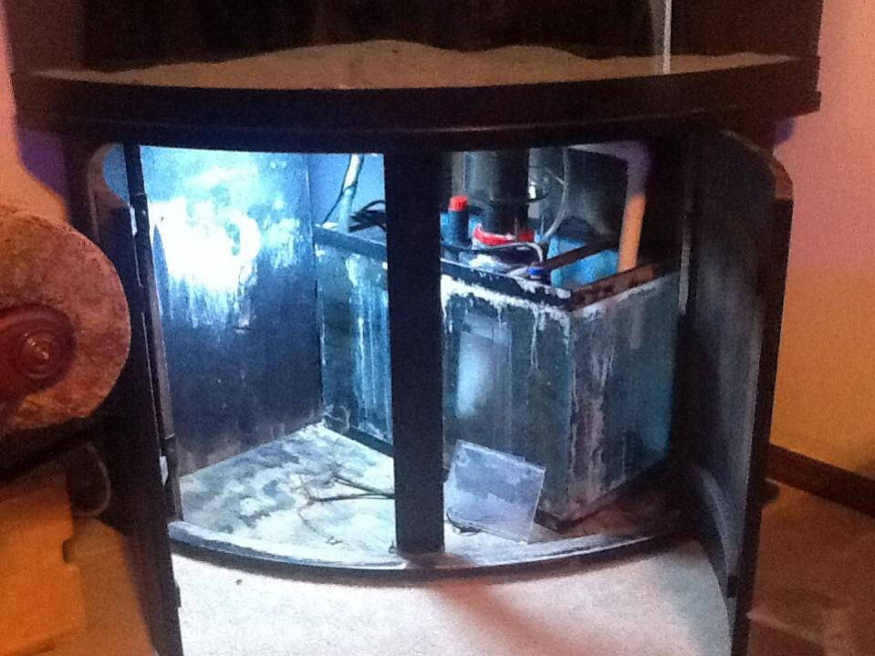 92 Gallon Corner Tank And Stand With 30 Sump Pump 50000