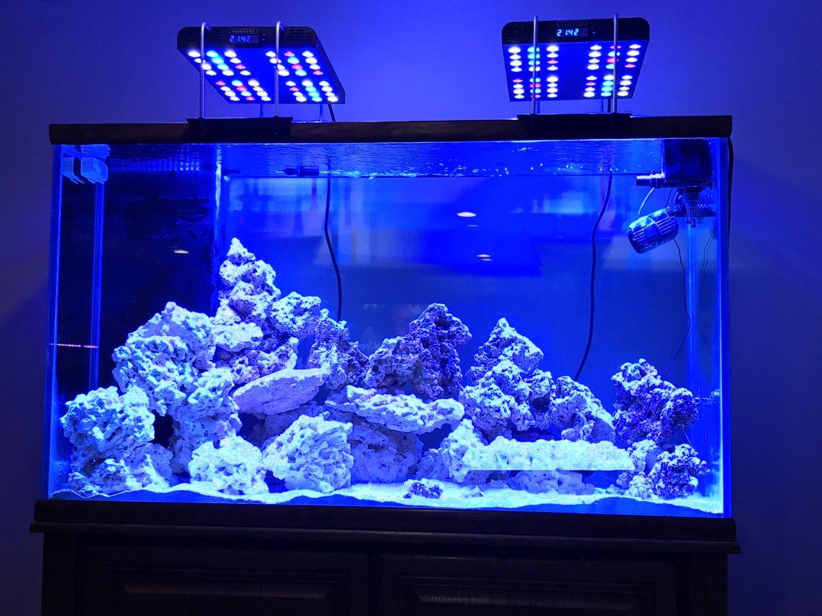 Ocean Aquarium | Ocean Revive Arctic T247 Reef2reef Saltwater And Reef Aquarium Forum