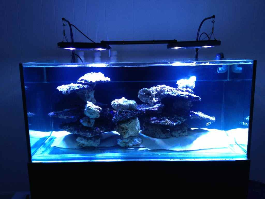 100 gallon rimless tank build reef2reef saltwater and for Rimless fish tank