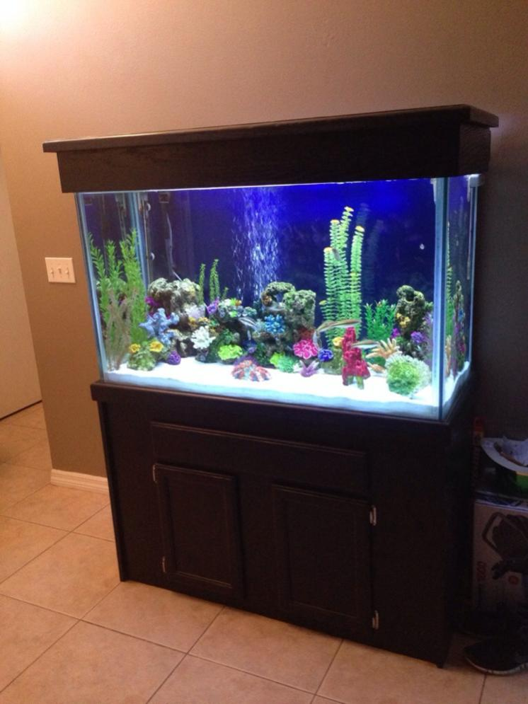 110 gallon tall aquarium for sale reef2reef saltwater for Tall fish tank decorations