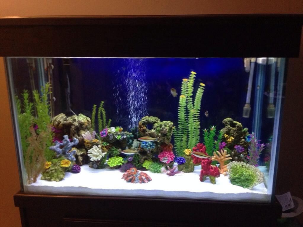 110 gallon tall aquarium for sale reef2reef saltwater for Tropical fish tanks for sale