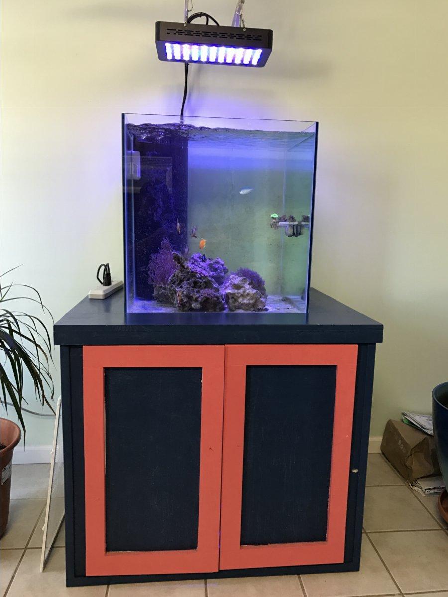 Marineland 60 gallon cube aquarium 1000 aquarium ideas for 200 gallon fish tank dimensions