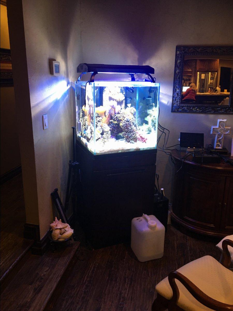 Lampu Aquarium Metal Halide