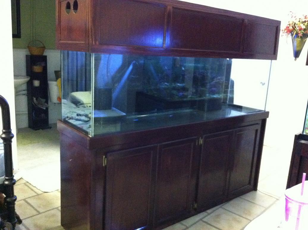 125 gallon aquarium for sale reef2reef saltwater and for Saltwater fish tank for sale