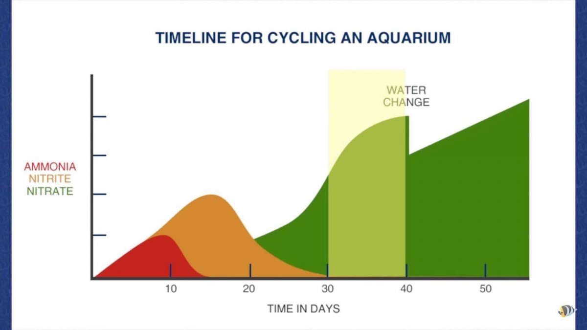 Nitrogen cycle stalled on nitrites reef2reef saltwater for Ammonia in fish tank