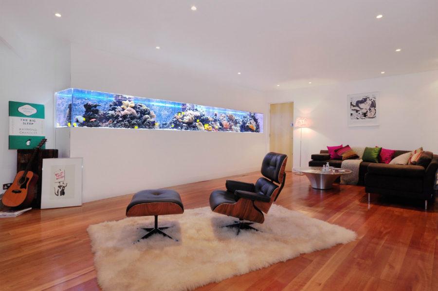 In-wall-design-aquarium-900x598.jpg