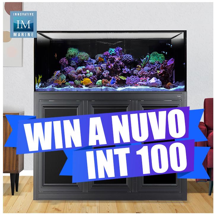 INT100.jpg