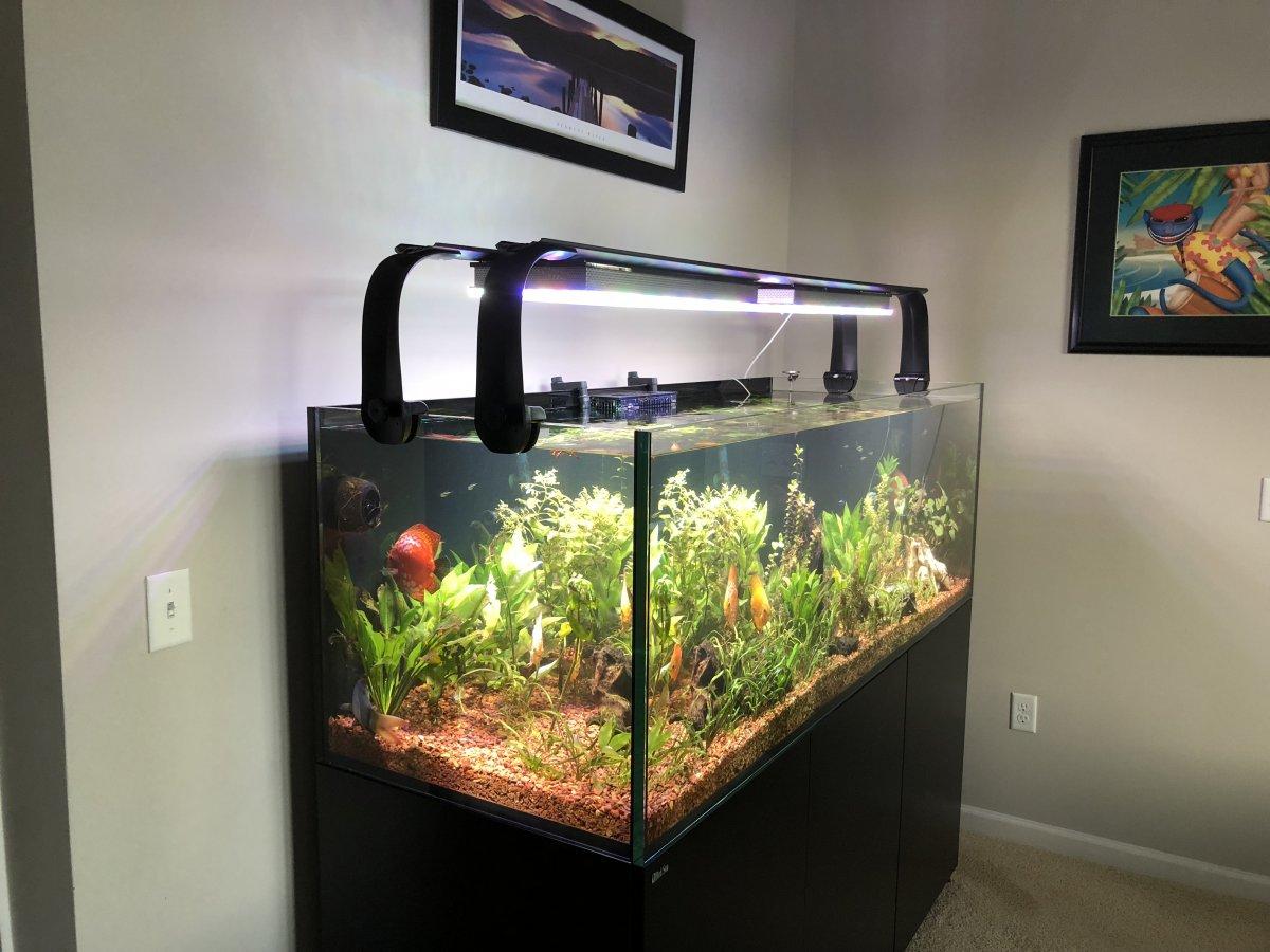 LED-aquarium-lighting.jpg