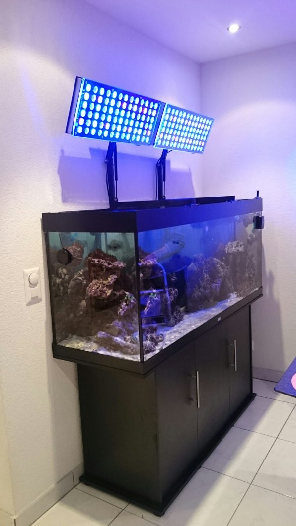LED Aquarium lighting Orphek Atlantik17.jpg