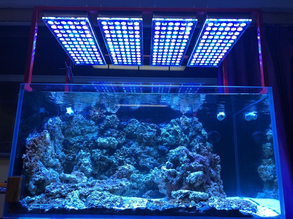 LED Aquarium lighting Orphek Atlantik23.jpg