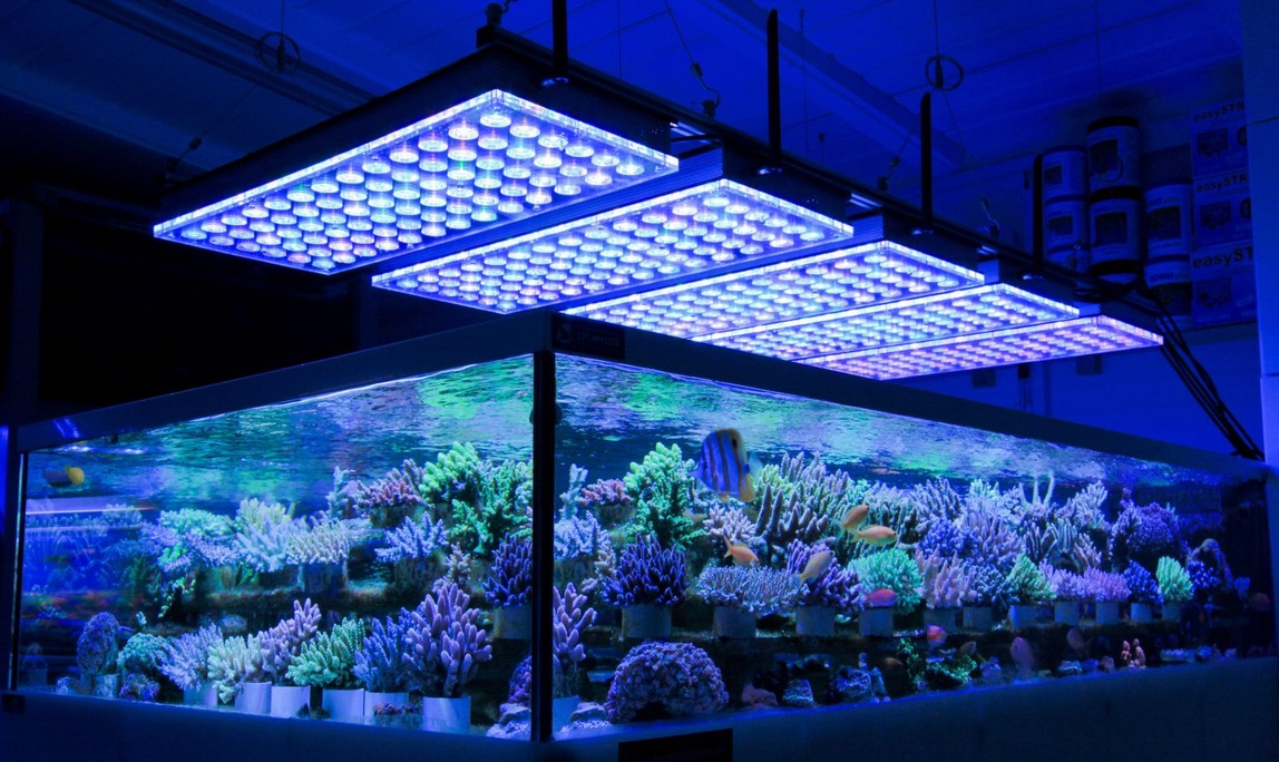 LED Aquarium lighting Orphek Atlantik37.jpg