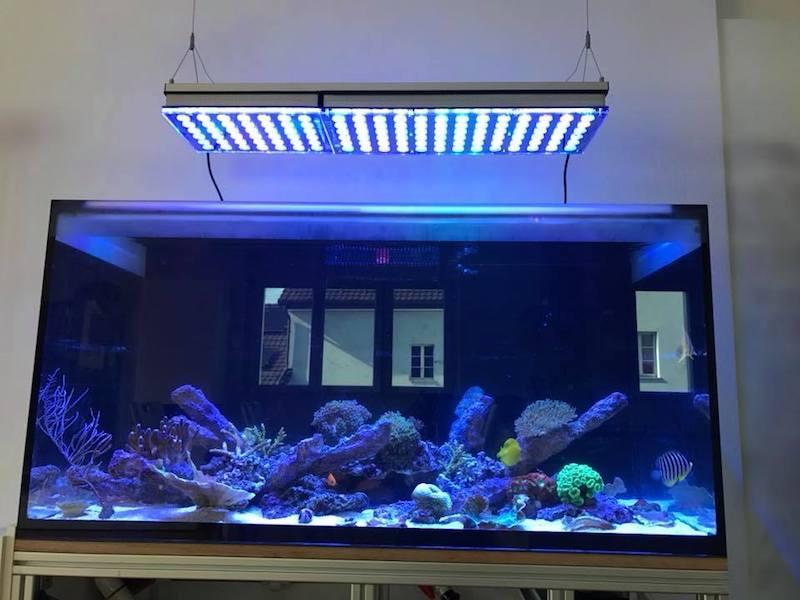 LED Aquarium lighting Orphek Atlantik42.jpg