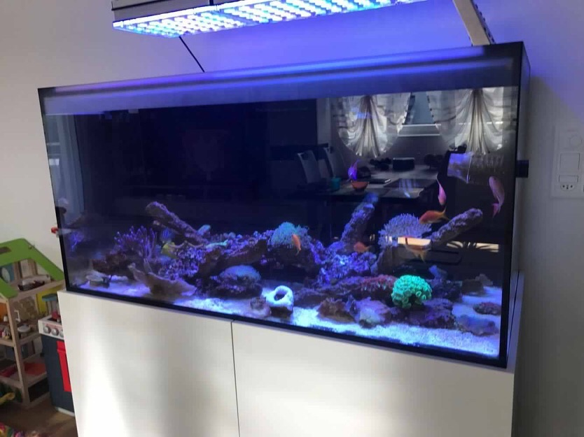 LED Aquarium lighting Orphek Atlantik44.jpg
