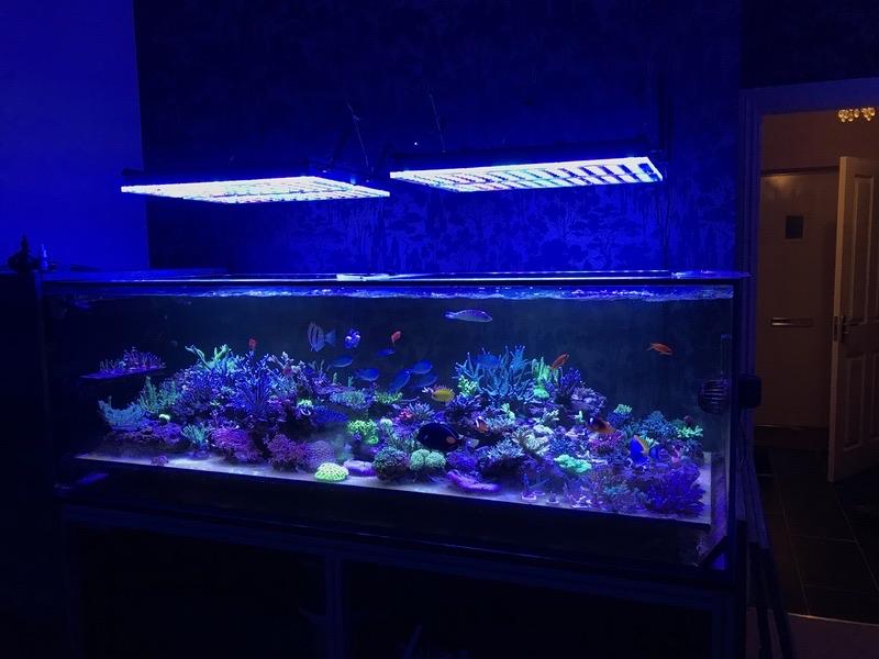 LED Aquarium lighting Orphek Atlantik45.jpg