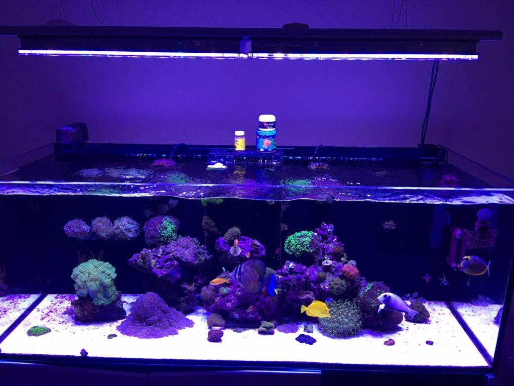 LED Aquarium lighting Orphek Atlantik51.jpg