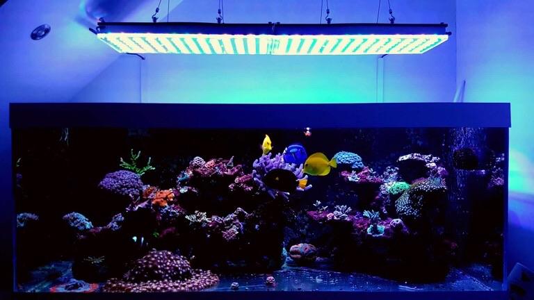 LED Aquarium lighting Orphek Atlantik52.jpg