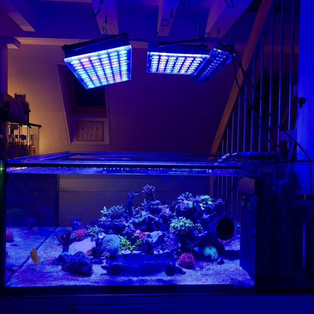 LED Aquarium lighting Orphek Atlantik57.jpg