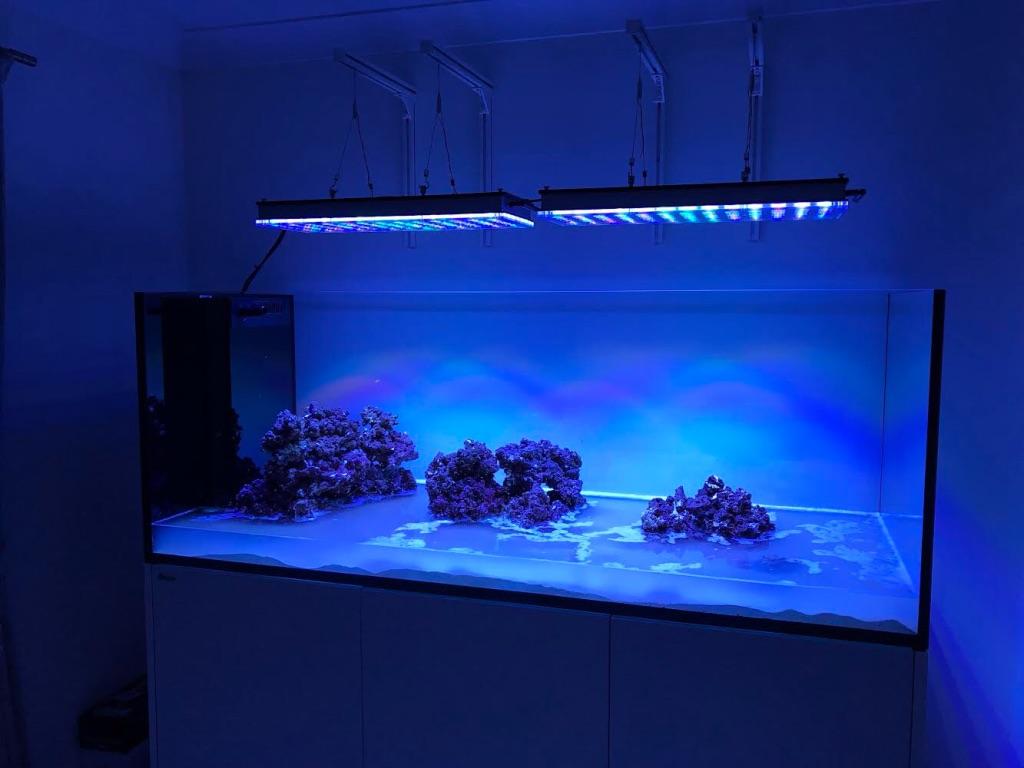 LED Aquarium lighting Orphek Atlantik61.jpg