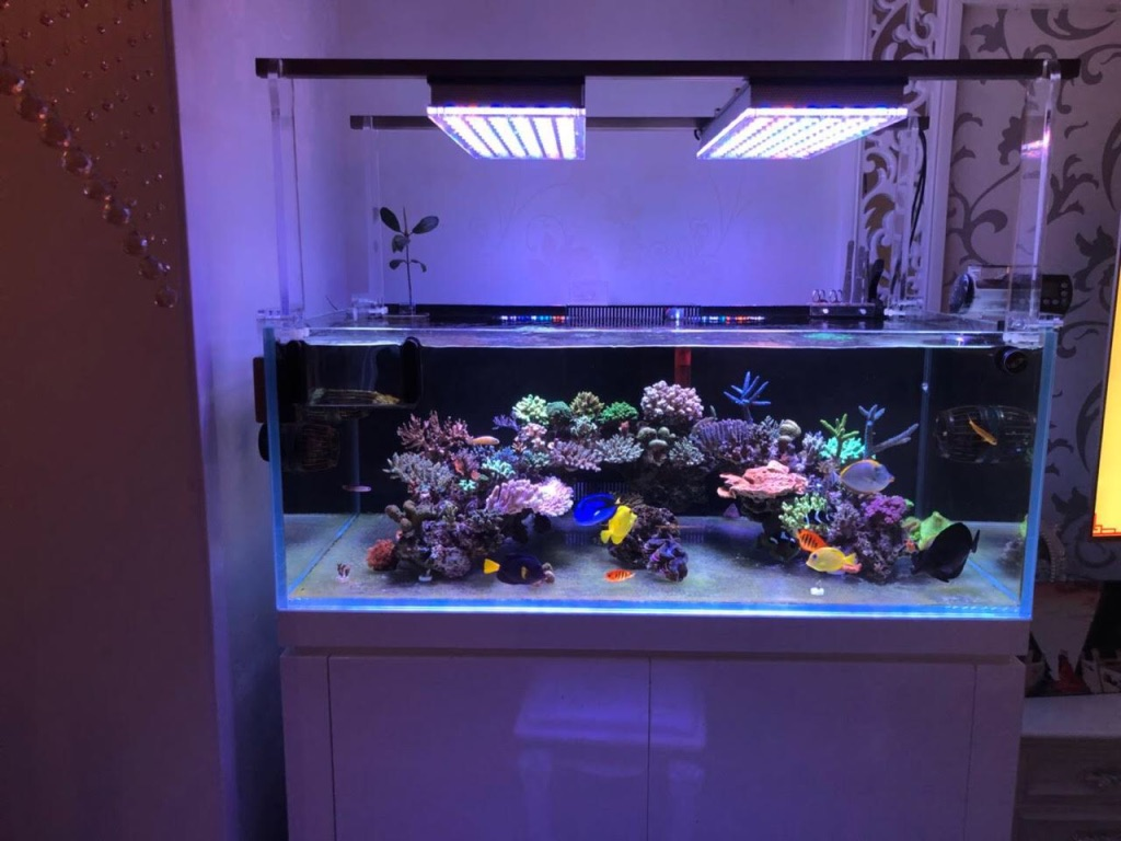 led aquarium lighting orphek atlantik64jpg