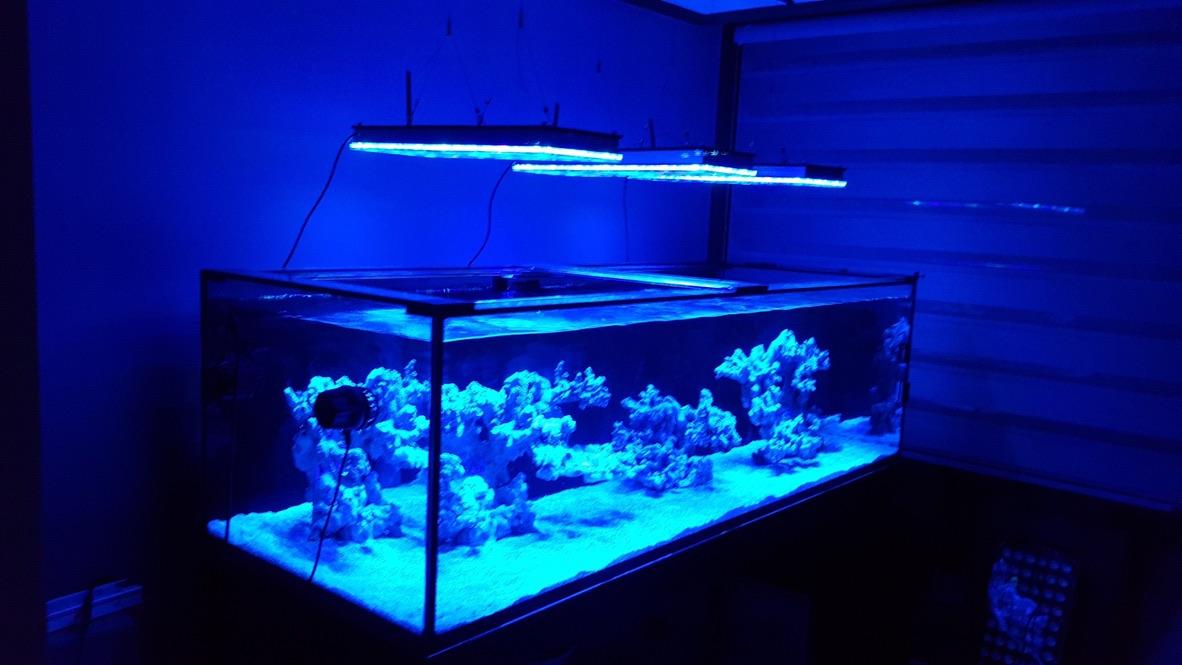 LED Aquarium lighting Orphek Atlantik66.jpg