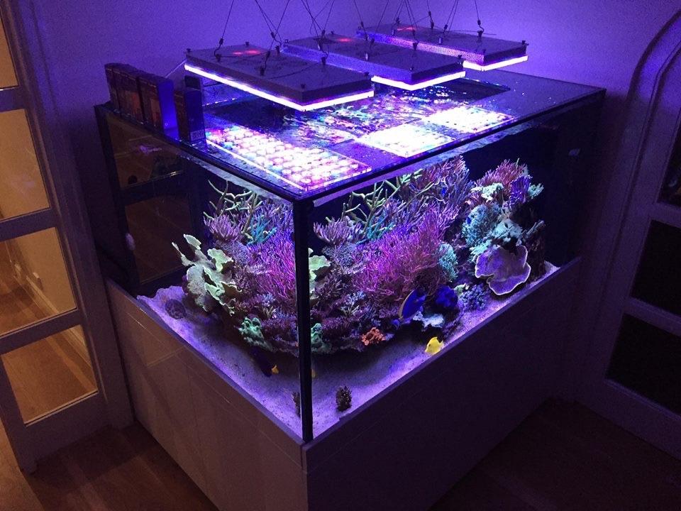 LED Aquarium lighting Orphek Atlantik76.jpg