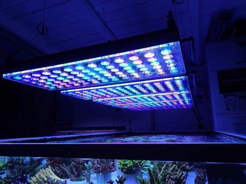 LED Aquarium lighting Orphek Atlantik83.jpg