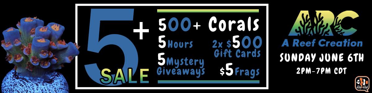 live sale 1200x300.jpg