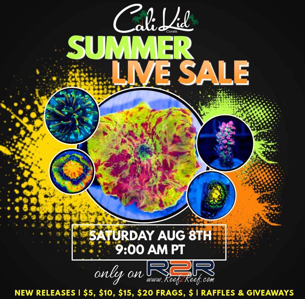 Live Sale Flyer 8.8.20.jpg