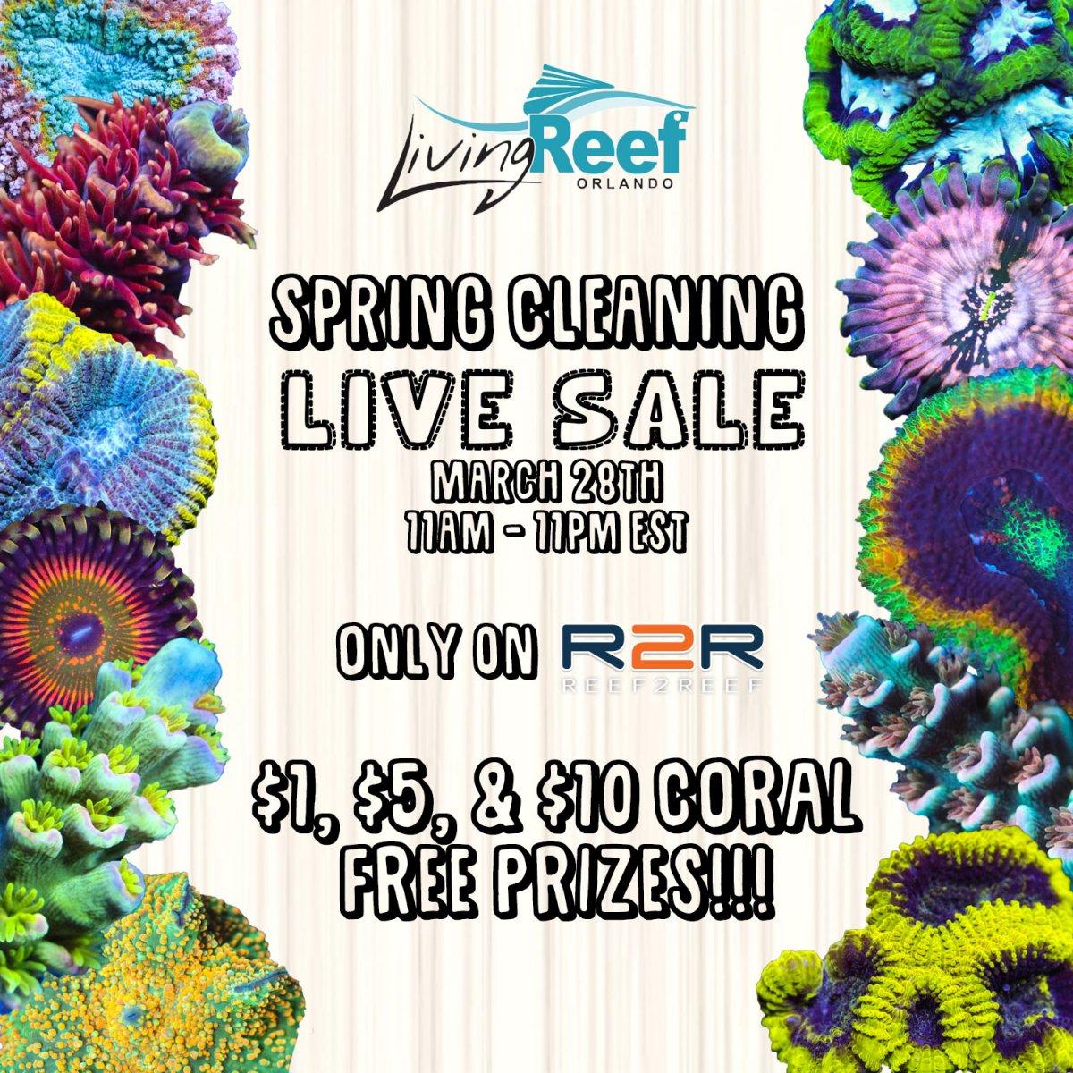 live sale flyer.jpg