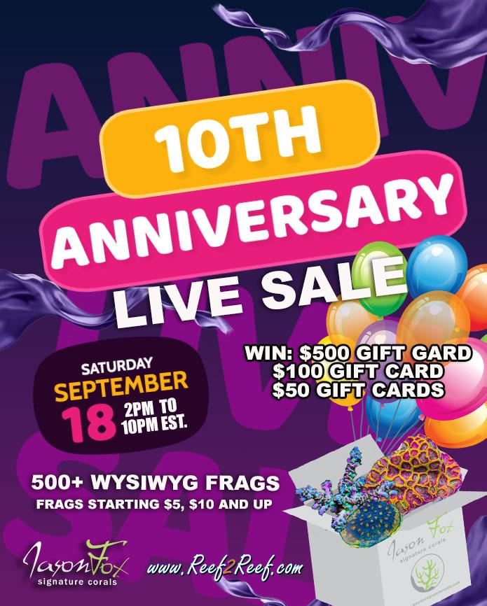 live sale poster.jpg