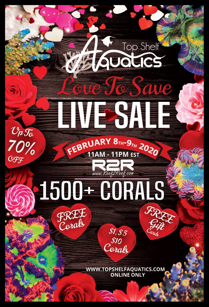 Love-To-Save-Live-Sale.jpg