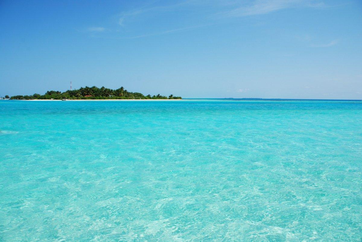 maldives-island-with-gorgeous-turquoise-water_7kIyX4 (2) (1).jpg