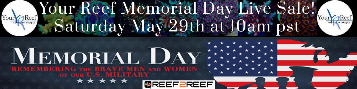 Memorial Day Live Sale.jpg