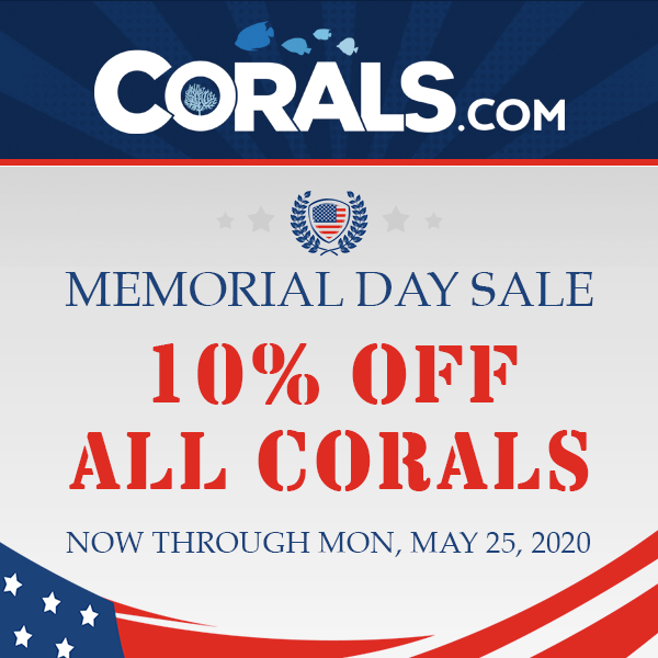 memorial_day_sale_600x600.png