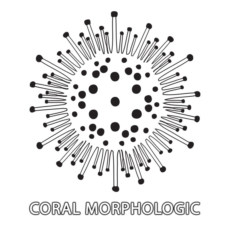 Morphologic.png