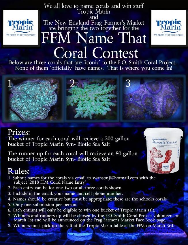 ffm forum com