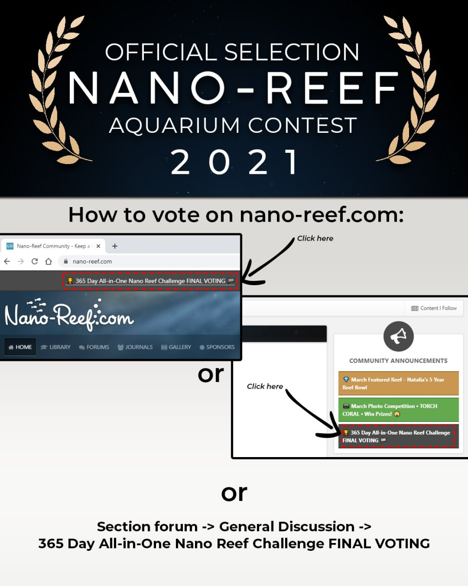 nanoreefcom_VoteInstructions_v02.jpg