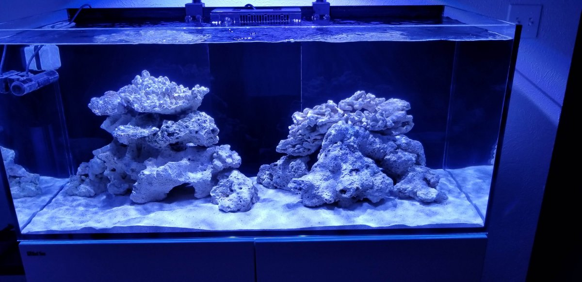 New Scape 3.0.jpg