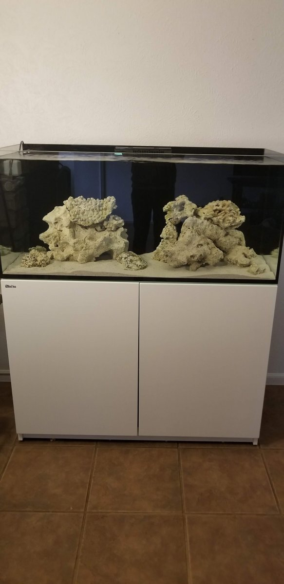 New Scape.jpg
