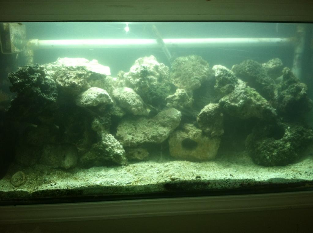 Would A 120g Deep Tank Look Good With Minimal Aquascape? If Someone Has A  120g Deep With A Minimal Aquascape Please Post.