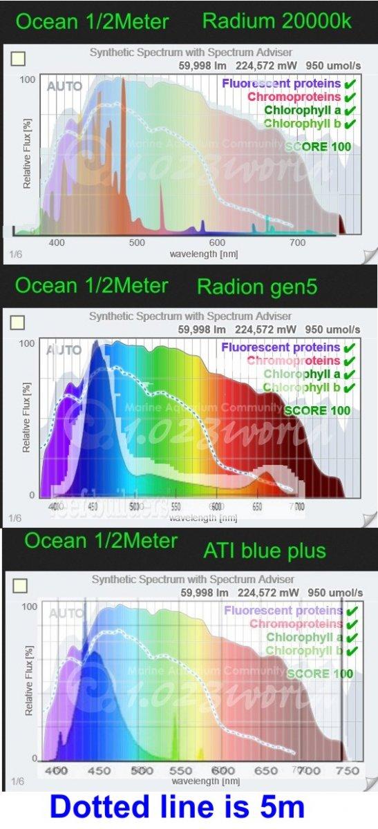 oceancomp.JPG