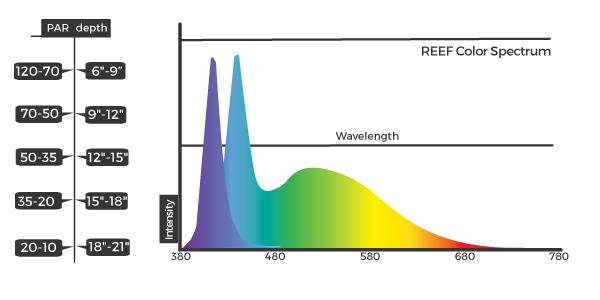 Orbit-Marine-Spectrum.jpg
