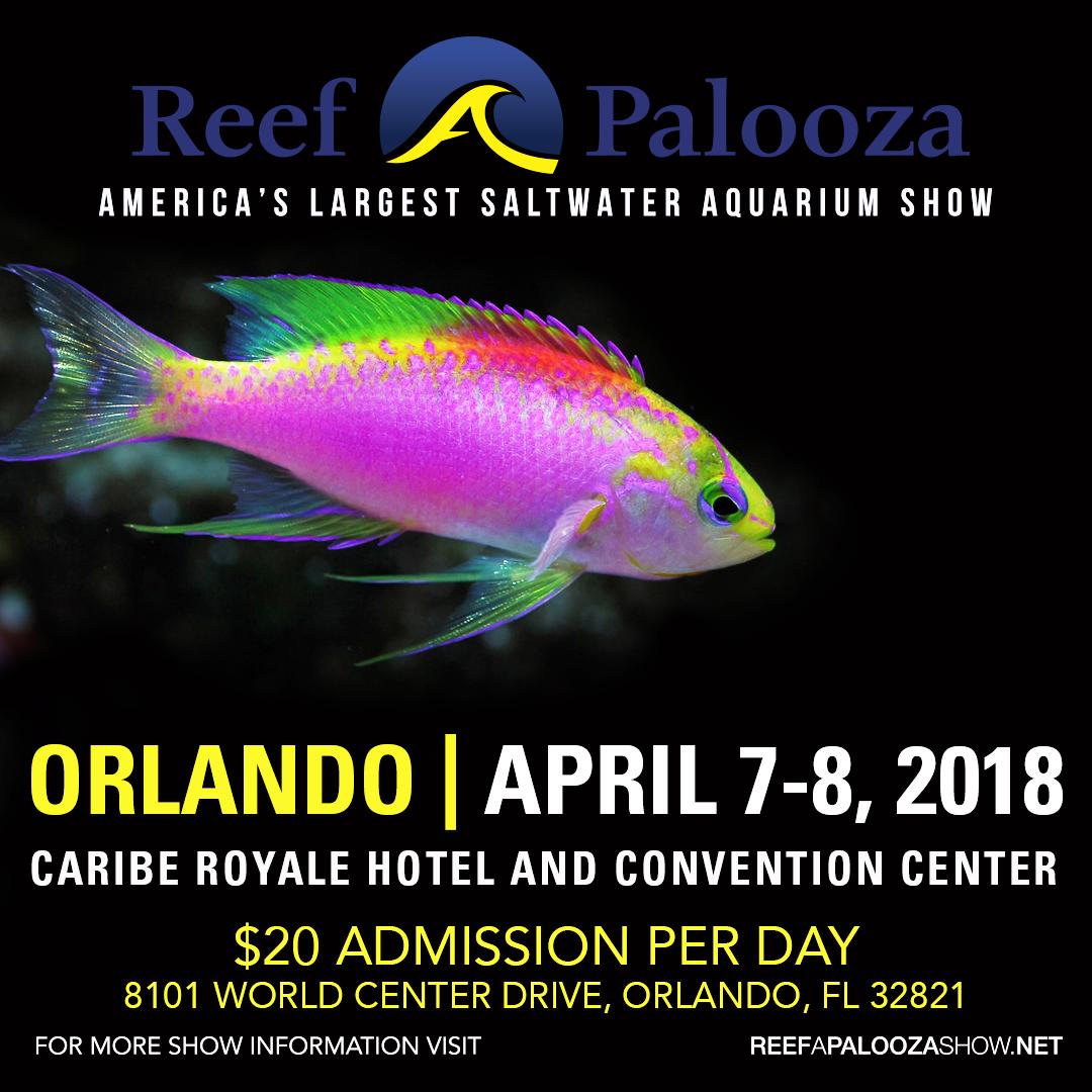 Orlando 2018_Press Kit Graphic_5.png